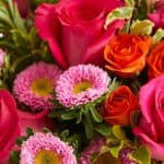Gerberas Bouquet For Your Love