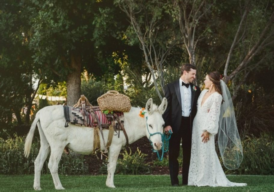 When Is The Best Time For A Texas Wedding?