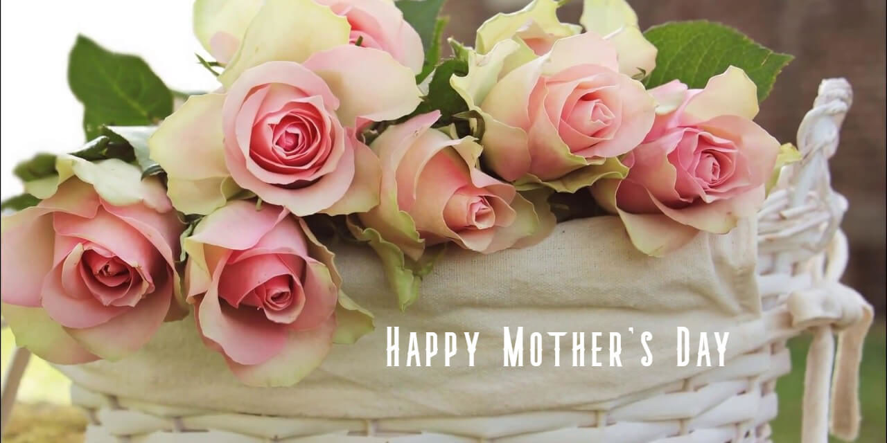 What Are The Best Flowers To Gift Your Mother On Mother's Day?