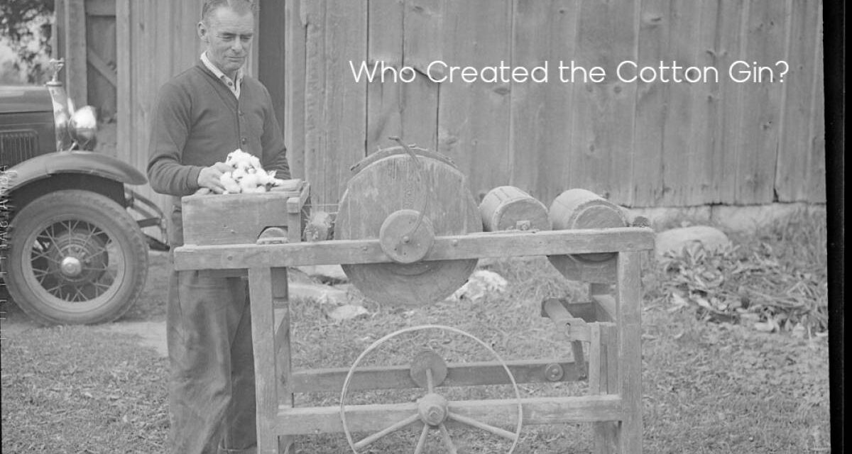 Who Created the Cotton Gin?