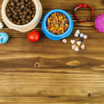 Why Pet food toys products are the best life hacks for Pet Owners.