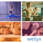 What are the Customer Relationship Services Offered by Wellyx?